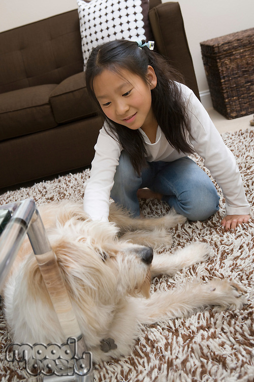 Girl (10-12) playing with dog