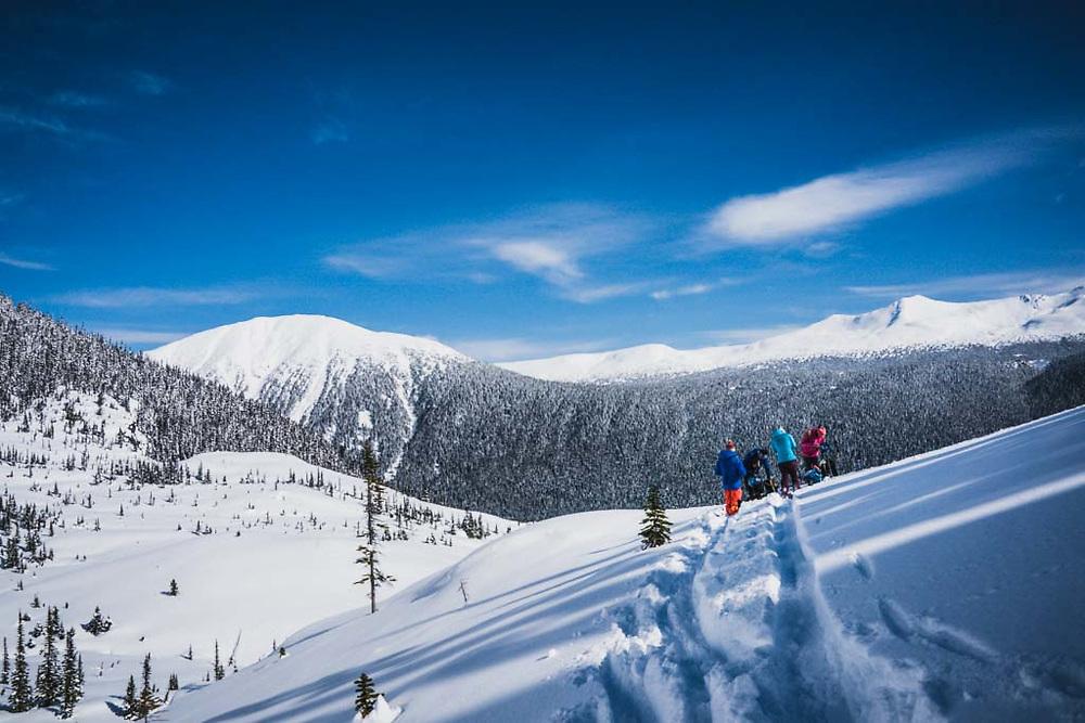 Joe Morabito, Simon Thomson, Emily Bodner, and Erme Catino transition below the Loft Peak Glacier, Howson Range, British Columbia.