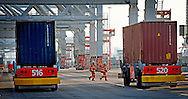 ROTTERDAM - Loading and unloading containers at the docks of the ECT Delta Terminal in Rotterdam