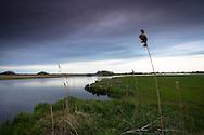 Europe, Germany, Lower Saxony, Worpswede, the river Beek, an influent of the river Hamme near Neu Helgoland at the Teufelsmoor.<br /> <br /> Europa, Deutschland, Niedersachsen, Worpswede, die Beek, ein Nebenfluss der Hamme in den Hammeniederungen bei Neu Helgoland, Teufelsmoor.