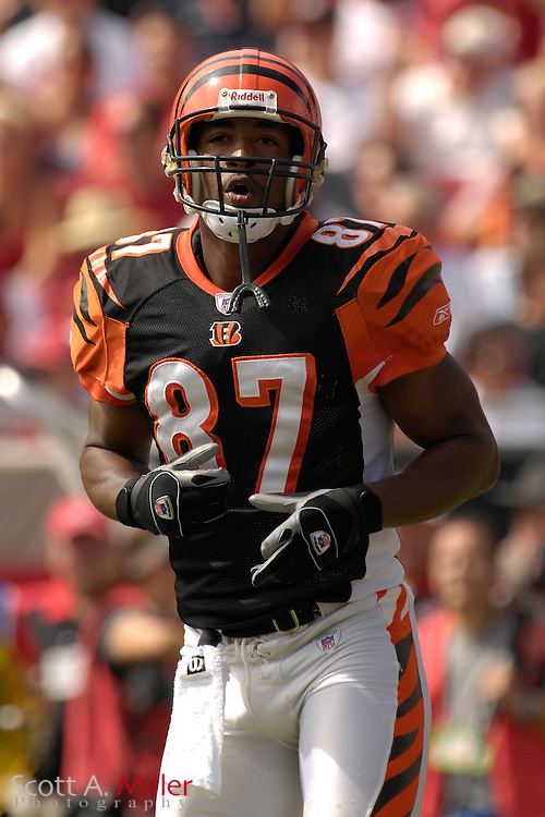 Oct. 15, 2006; Tampa, FL, USA; Cincinnati Bengals receiver (87) Kelly Washington in action during the Bengals game against the Tampa Bay Buccaneers at Raymond James Stadium. ...©2006 Scott A. Miller