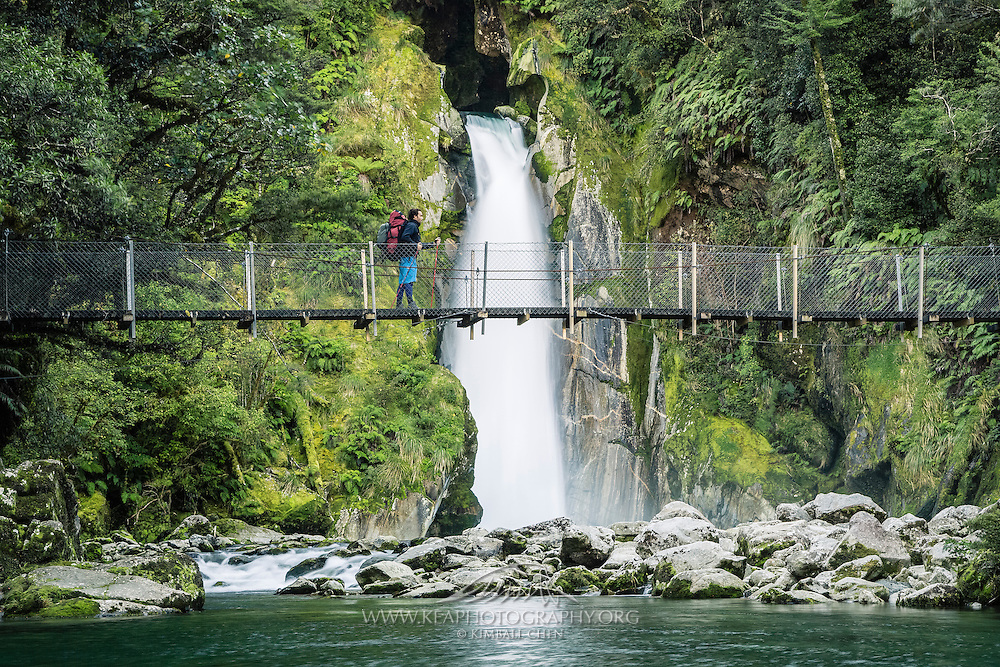 A hiker traverses the swing bridge at Giant Gates Falls, Milford Track, New Zealand.