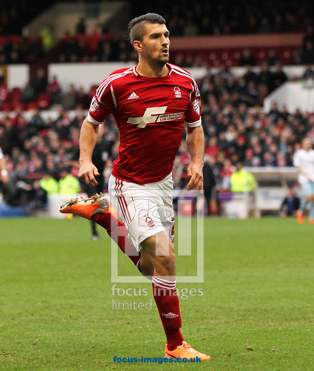 Picture by Tom Smith/Focus Images Ltd 07545141164<br /> 05/01/2014<br /> Eric Lichaj of Nottingham Forest during the The FA Cup match at the City Ground, Nottingham.