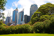 Sydney CBD from the Botanic Gardens.