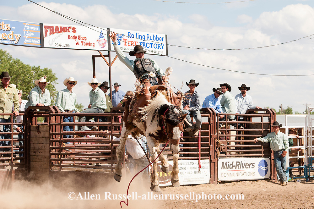 2012 Saddle Bronc winner, NFR Qualifier, JJ Elshere, Miles City Bucking Horse Sale, Montana.