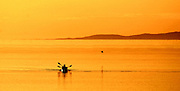 The Great Salt Lake in Utah glows from the setting sun as kayakers come in for the day at Antelope Island State Park.