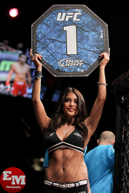 May 28, 2011; Las Vegas, NV; USA; Arianny Celeste at UFC 130 at the MGM Grand Garden Arena.