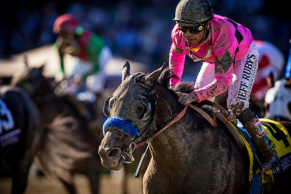 New Years Day, ridden by Martin Garcia wins the Breeders' Cup Juvenile on November 2, 2013 at Santa Anita Park in Arcadia, California during the 30th running of the Breeders' Cup.(Alex Evers/ Eclipse Sportswire)