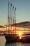 A sailboat silhouette at sunrise in Bar Harbor, Maine
