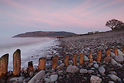 Clouds tinged pink from the setting sun behind the camera, over Bossington Hill, with a groyne in the foreground.