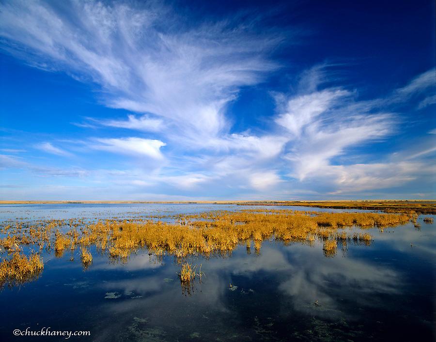 Wetlands pond at Bowdoin National Wildlife Refuge near Malta, Montana, USA