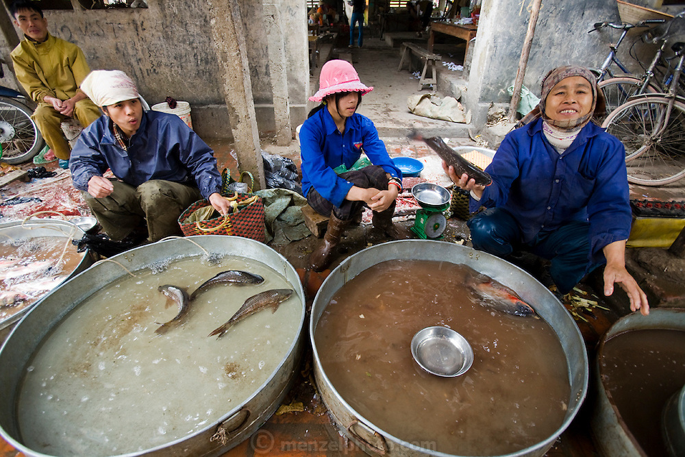 Vendors sell fish at market in Tho Quang village, outside Hanoi, Vietnam.