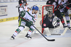 14.12.2014, Saturn Arena, Nürnberg, GER, DEL, Ice Tigers Nuernberg vs Augsburg Panthers, 27. Runde, im Bild Louie Caporusso (weiss-Augsburg) vs. Torhueter Andreas Jenike (schwarz-Nuernberg) // during Germans DEL Icehockey League 27th round match between Ice Tigers Nuernberg and Augsburg Panthers at the Saturn Arena in Nürnberg, Germany on 2014/12/14. EXPA Pictures © 2014, PhotoCredit: EXPA/ Eibner-Pressefoto/ Arth<br /> <br /> *****ATTENTION - OUT of GER*****