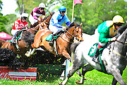 24  March, 2012:  Jacob Roberts and CLASSIC BRIDGES clear an early hurdle in the James W Maloney Maiden Hurdle.
