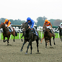Devilment and M Barzalona winning the 2.20 race