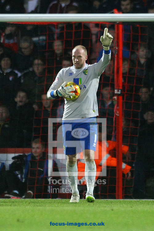John Ruddy of Norwich during the match at the Goldsands Stadium, Bournemouth<br /> Picture by Paul Chesterton/Focus Images Ltd +44 7904 640267<br /> 10/01/2015