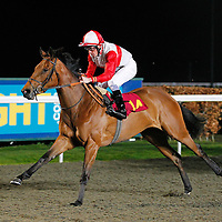 The Silver Kebaya and S W Kelly winning the 8.25 race