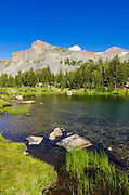 Alpine tarn in Dana Meadows under Mount Dana,Tuolumne Meadows, Yosemite National Park, California USA