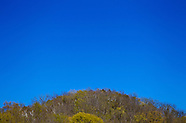2012-4-19-Shades of Spring