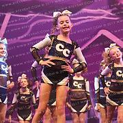 5013_Chiltern Cheetahs - Chiltern Cheetahs Bolt