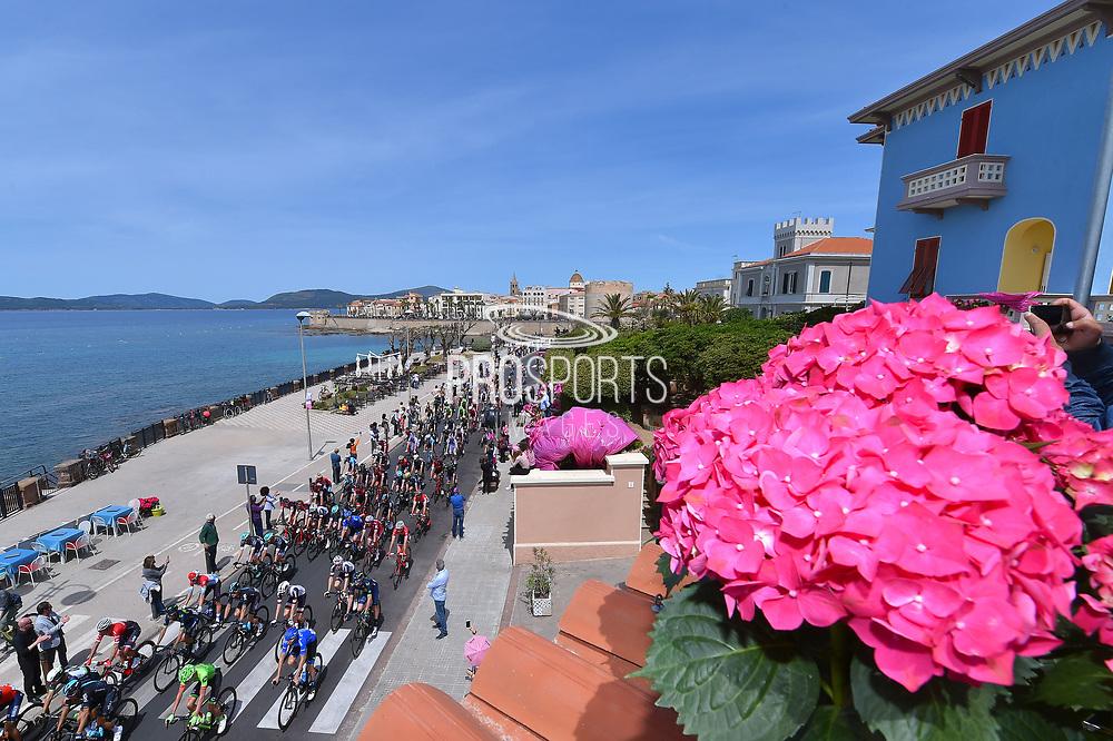 Illustration, Start, Landscape, Peloton, Alghero City, Pink, Sea, Fans, Public, Flower, during the 100th Tour of Italy 2017, Giro d'Italia, Stage 1, Alghero - Olbia (206km), on May 5, in Sardegna, Italy - Photo Tim De Waele / ProSportsImages / DPPI