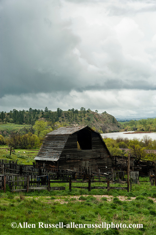 Old barn, corrals, Yellowstone River, west of Rosebud, Montana