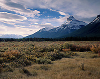 Pilot Mountain from Bow Valley Meadows, Banff National Park Alberta Canada