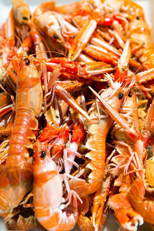 Close up of freshly caught lobsters for sale at a fish market in Santiago de Compostela, Galicia, Spain.