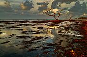 Sunrise at the Old Bahia Honda Bridge in the Florida Keys