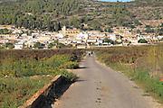 Road through vineyard to village of Lliber, Marina Alta, Alicante province, Spain