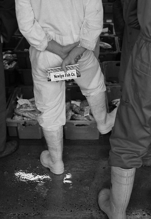 Newlyn fish market.<br /> <br /> Once landed the fish are taken to the fish market which runs alongside the harbour. They are then sorted, graded, weighed and put on display ready to inspected by propective buyers prior to the morning's traditional 'shout' auction.