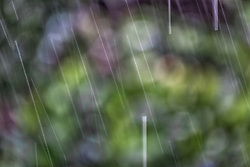 The Effect of Shutter Speed on Falling Rain Set 2-#5