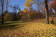 Autumn colors in Central Park, New York City.
