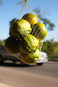 Divinopolis_MG, Brasil...Comercio informal de mexerica na rodovia MG-50 em Divinopolis...The informal trade of tangerine on MG-50 highway in Divinopolis...Foto: LEO DRUMOND / NITRO
