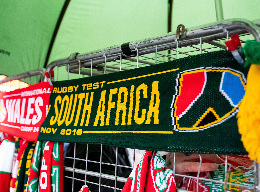 A Flag showing South Africa<br /> <br /> Photographer Simon King/Replay Images<br /> <br /> Under Armour Series - Wales v South Africa - Saturday 24th November 2018 - Principality Stadium - Cardiff<br /> <br /> World Copyright © Replay Images . All rights reserved. info@replayimages.co.uk - http://replayimages.co.uk
