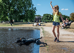 © Licensed to London News Pictures. 23/07/2018. London, UK. Emily Sutherland, 10, throws a stick for Puffin the dog by the boating pond on Clapham Common, south London, as hot weather continues in the capital. Forecasters are predicting record temperatures this week. Photo credit: Rob Pinney/LNP