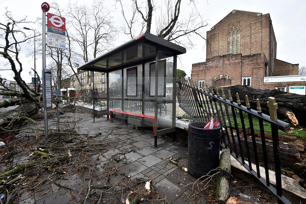 © Licensed to London News Pictures. 28/03/2016. London, UK. Damage is caused at a bus stop in Clapham, south-west London by a tree that was blown over by high winds Storm Katie hits the UK. Photo credit : Hannah McKay/LNP