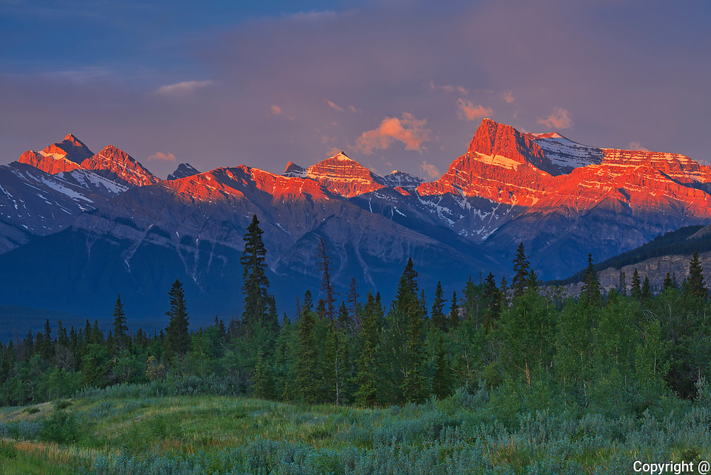 Canadian Rocky Mountains  at sunrise.<br />David Thompson Highway<br />Alberta<br />Canada