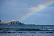 the rainbow ends at Curio Bay!