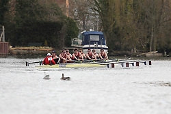 2012.02.25 Reading University Head 2012. The River Thames. Division 1. Oxford Brookes University Boat Club.