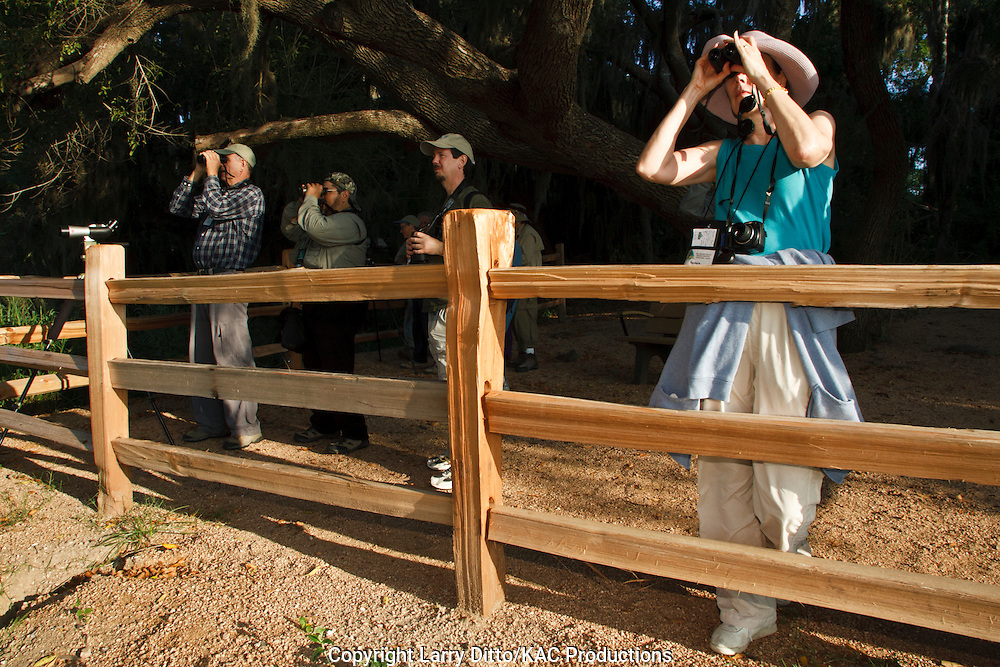 "From behind a split-rail fence along the ""A"" trail at Santa Ana National Wildlife Refuge near Alamo, a group of birders searches for colorful birds during their visit to south Texas and the Rio Grande Valley Birding Festival hosted annually in Harlingen."