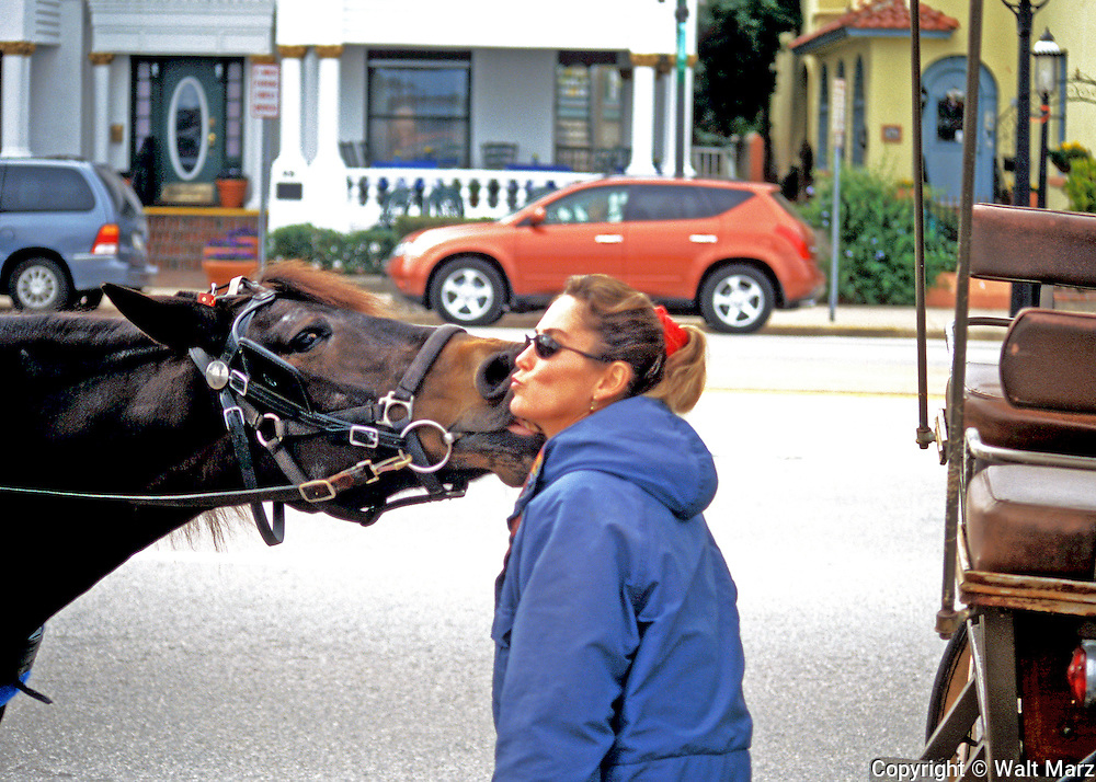 Carriage Tour Guide has a moment with her horse in St. Augustine, Florida