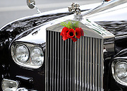 © Licensed to London News Pictures. 10/11/2011. London, UK. A posse of poppy's on the front of HRH Prince Philip's car. HRH The duke of Edinburgh opens the annual Field of Remembrance at Westminster Abbey today 10 November. . Photo credit : Stephen Simpson/LNP