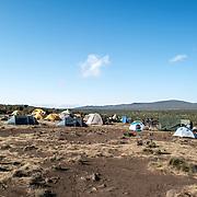 Tents laid out at Shira 1 camp on Mt Kilimanjaro.