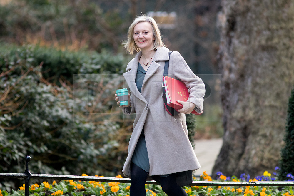 © Licensed to London News Pictures. 06/02/2018. London, UK. Chief Secretary to the Treasury Liz Truss arriving in Downing Street to attend a Cabinet meeting this morning. Photo credit : Tom Nicholson/LNP