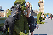 UNITED KINGDOM, London: 24 May 2016 Five six-foot tall giant monkeys are displayed on Westminster Bridge this morning to mark the launch of The Body Shop's new Bio-Bridges programme, which aims to regenerate 75million square metres of forest and protect it from exploitation, poaching and sustainable harvesting. <br /> The monkeys represent the endangered Vietnamese Red Shanked Douc species.<br /> Rick Findler / Story Picture Agency