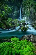 Oceania; New Zealand; Aotearoa; North Island; Kawerau; Tarawera Falls