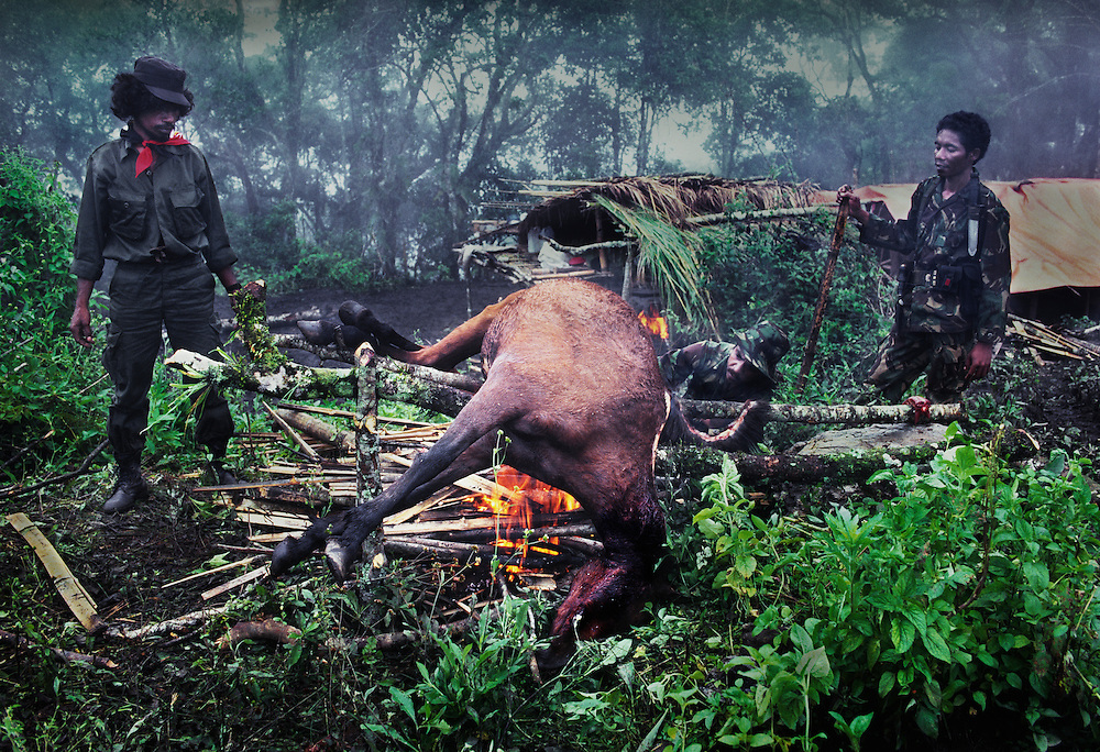 Falintil soldiers roasting a horse.<br /> <br /> Finding food had always been difficult and many soldiers have suffered to the point of starvation.<br /> <br /> Horse meat was considered a luxury.<br /> <br /> East Timor, March 1999.