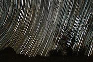 10月2日,在美国洛杉矶以东的约书亚树国家公园,摄影师用长时间曝光拍摄到的星轨。(图片经过星轨叠相程式合成) 。 新華社發 (趙漢榮攝)<br /> Star trails are seen above the Joshua Tree National Park in Twentynine Palms, California,  the United States, October 2, 2016. (Xinhua/Zhao Hanrong)(Photo by Ringo Chiu/PHOTOFORMULA.com)<br /> <br /> Usage Notes: This content is intended for editorial use only. For other uses, additional clearances may be required.