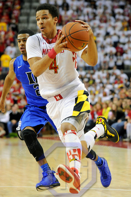 16 February 2013:   Maryland Terrapins guard Seth Allen (4) in action against Duke Blue Devils guard Quinn Cook (2) at the Comcast Center in College Park, MD. where the Maryland Terrapins upset the second ranked Duke Blue Devils, 83-81.
